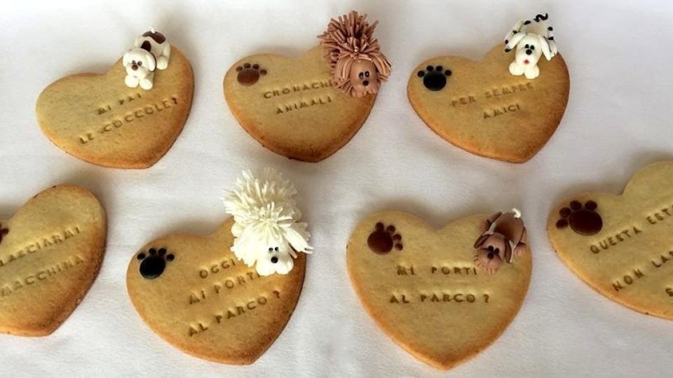 Antonella Stornaiuolo: il cake design per il mondo a quattro zampe